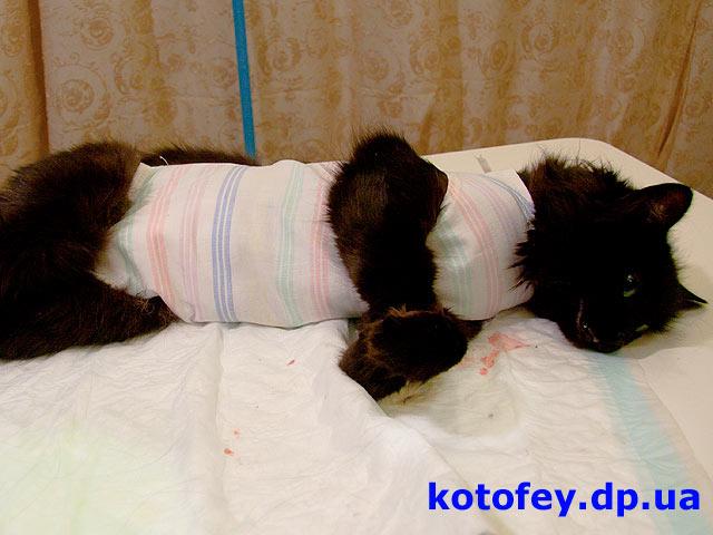Проходит реабилитацию после операции
