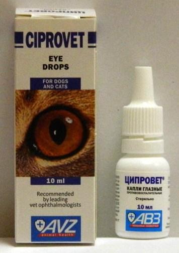 Ciprogen ciprofloxacin for dogs